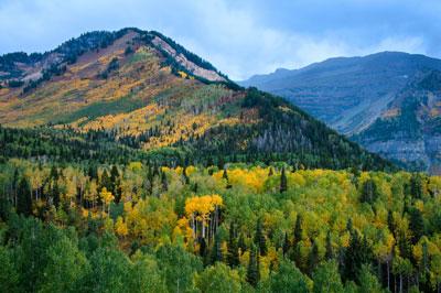 Alpine Utah