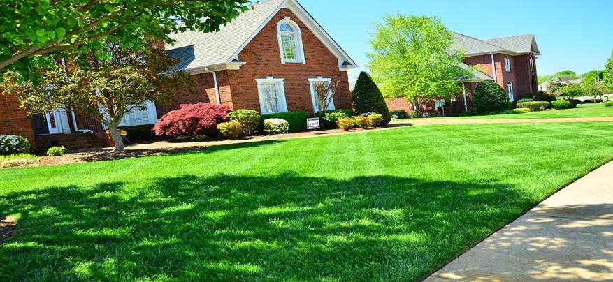 Utah Home green lawn