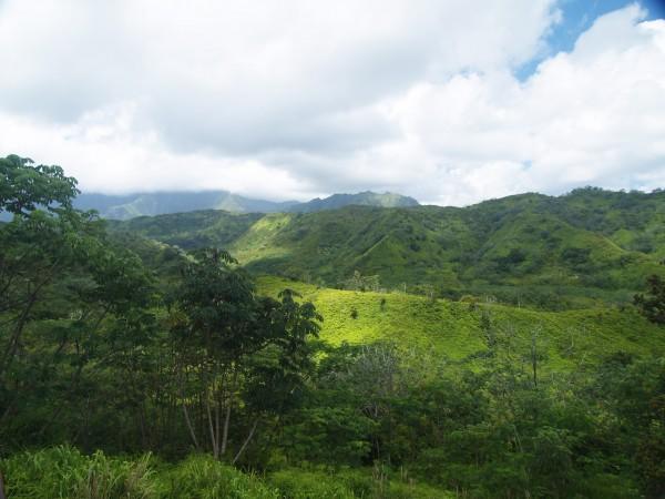 Haleiwa Ag land Oahu Hawaii