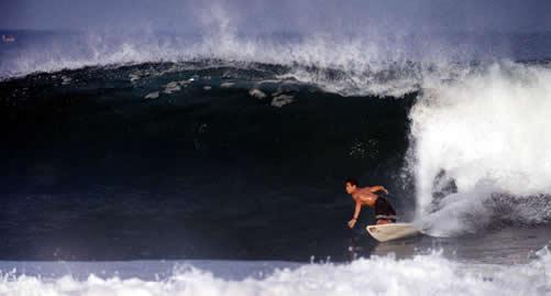 rick sakamoto surfing