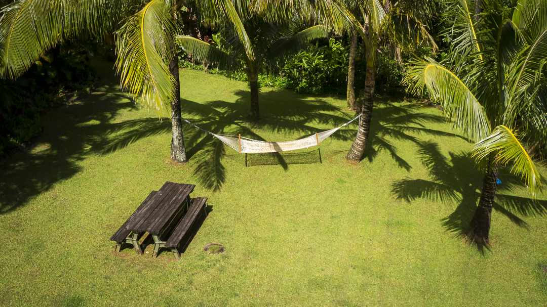 Relax in a Hammock in Palolo