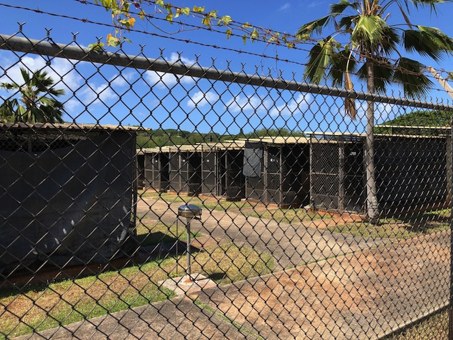 Hawaii Quarantine Dog Cages