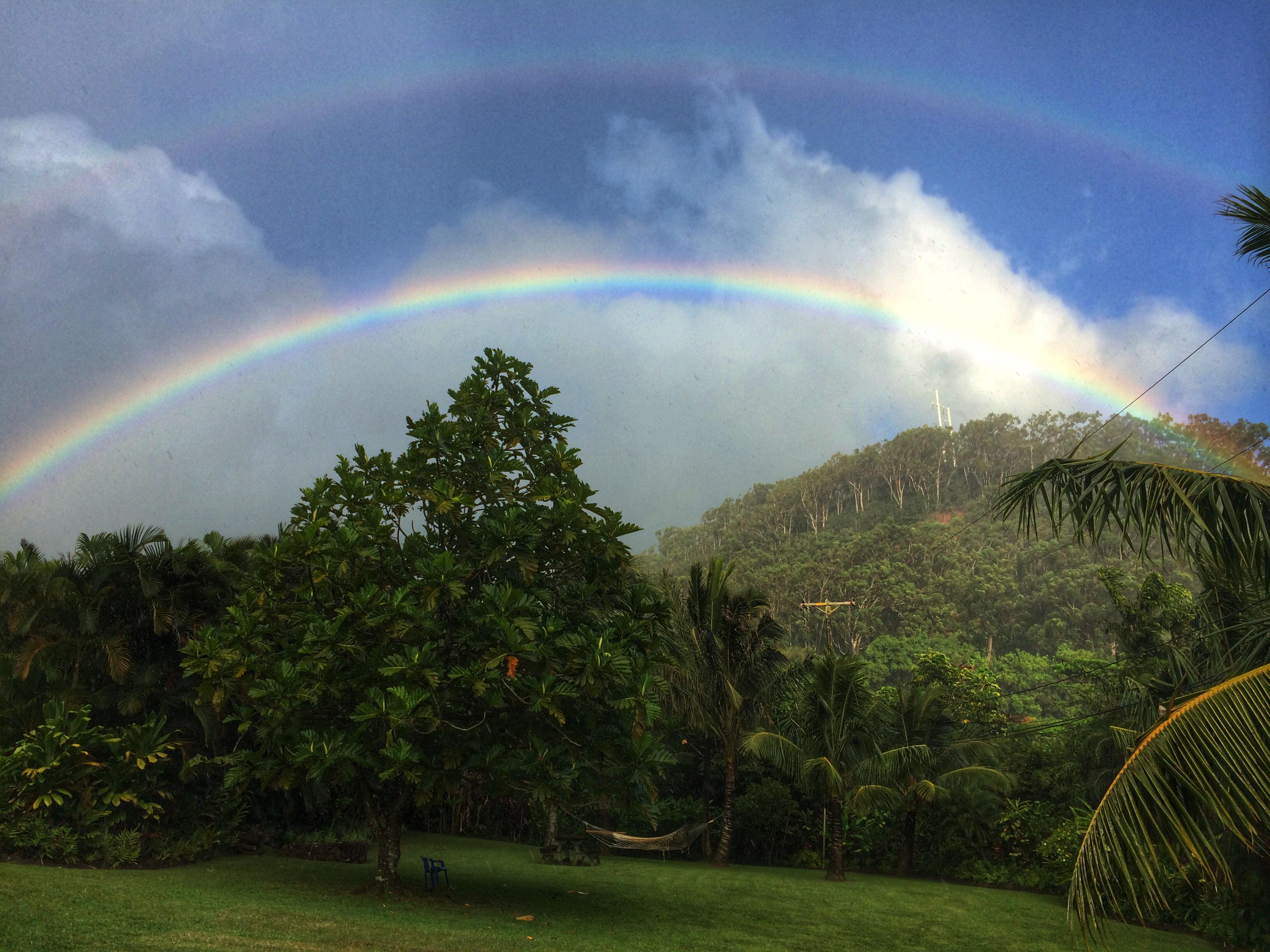 Palolo Rainbow