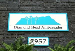 Diamond Head Ambassador