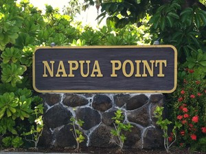 Napua Point sign