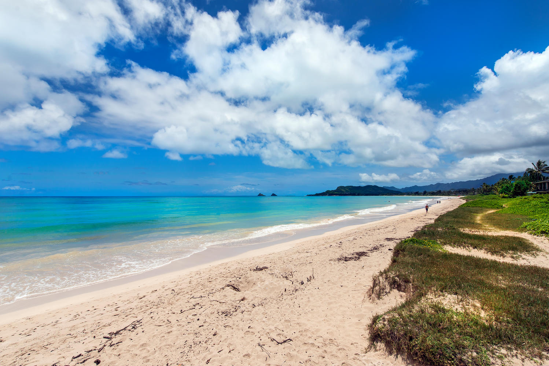 Beach -812 N Kalaheo Ave #F, Kailua 96734