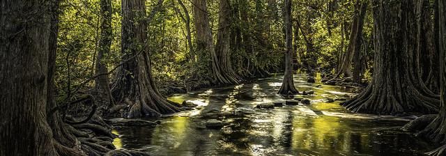 cibolo-creek-nature-preserve