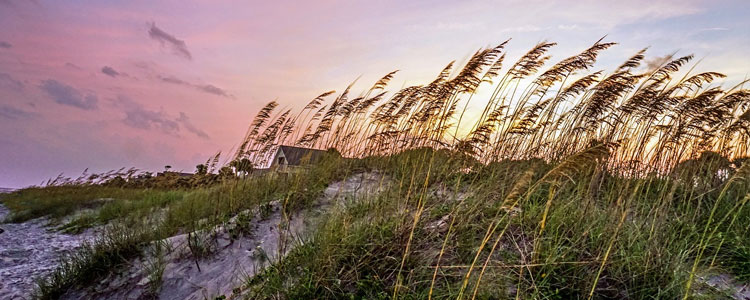 Moving to and Living in Hilton Head Island, S.C.