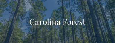 Carolina Forest Real Estate