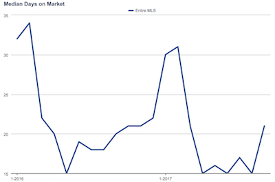 Charleston Market Reports