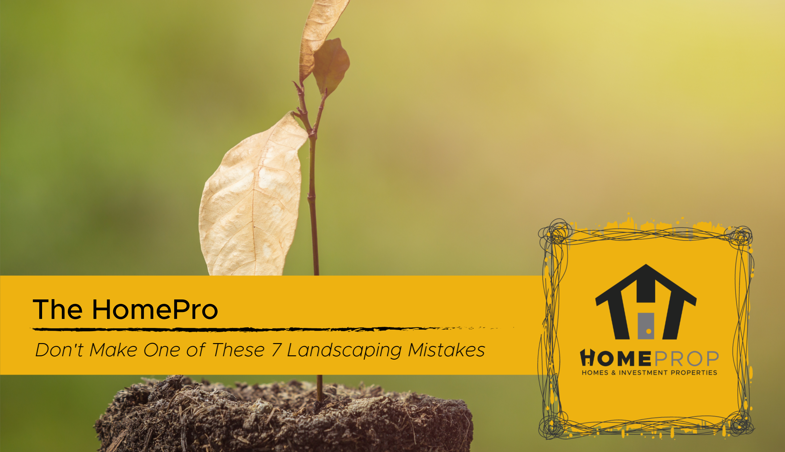 7 Common Landscaping Mistakes