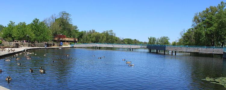 Brighton Michigan Mill Pond