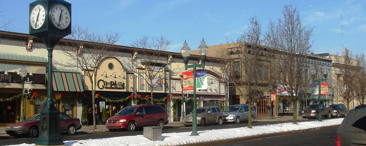 Movint to and living in Plymouth Michigan
