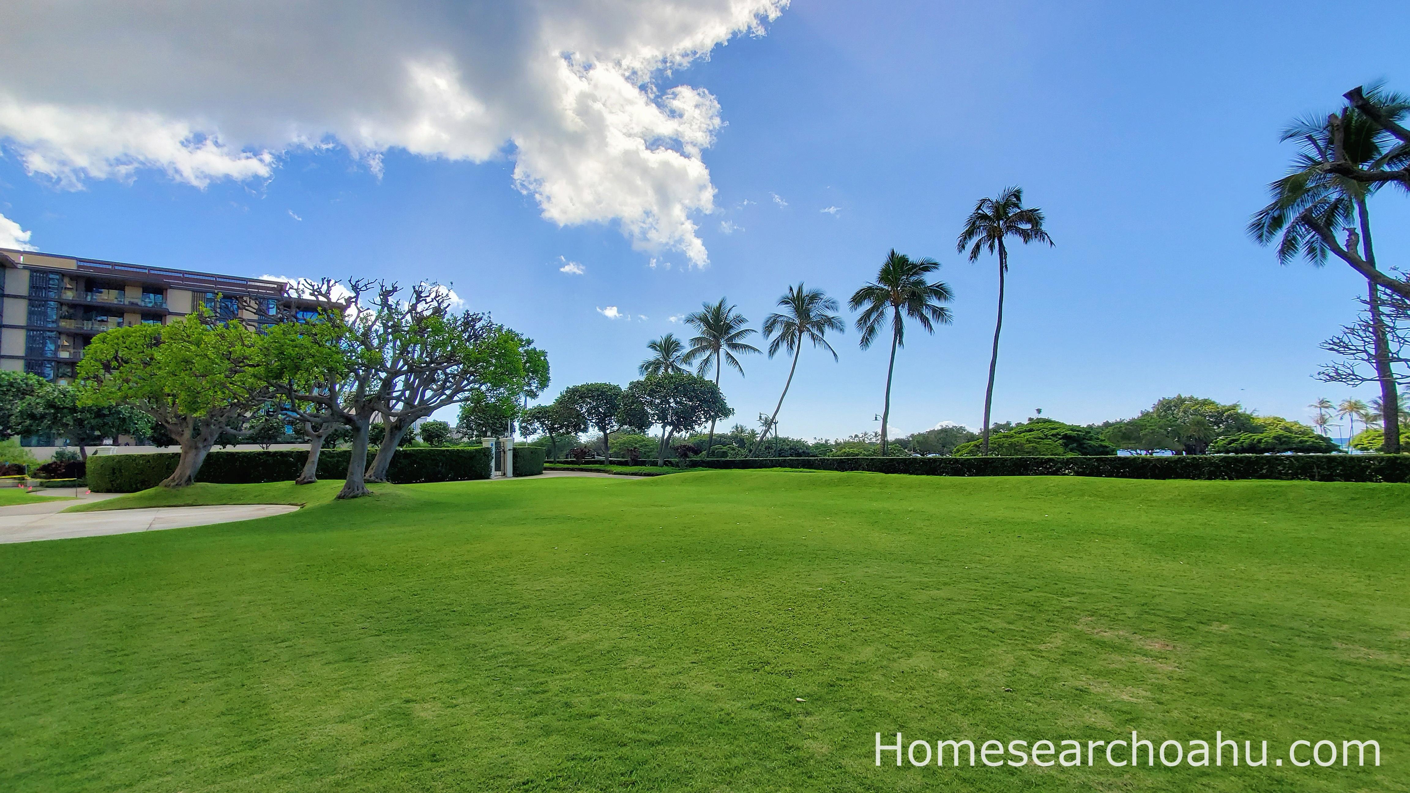 1350 Ala Moana Grassy Lawn