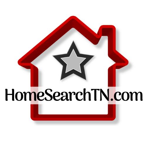 HSTN logo clear