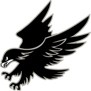 Volcano Vista High School Hawks