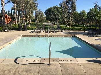 Marigold Kiddie Pool