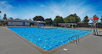 A view of the Stone Creek Swim Club with on-duty lifeguard and diving board