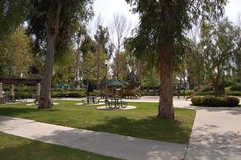 Community park in Bainbridge
