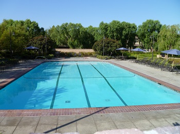 Enjoy the Woodbury community pool
