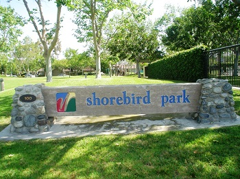 Shorebird Park is a short walk away