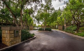 The gated Cypress community