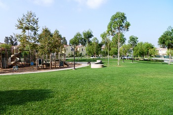 The Woodbury community park is steps away