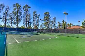 Two of the Association tennis courts