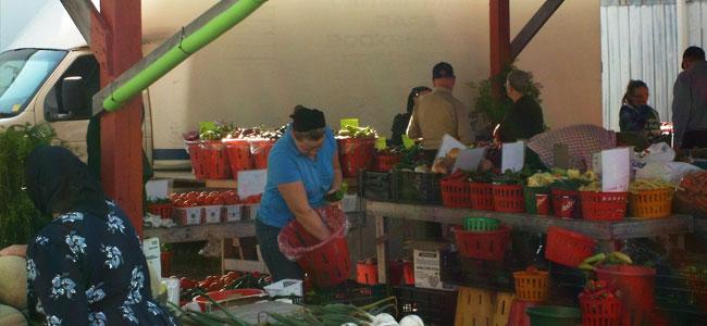 Aylmer Farmer Market