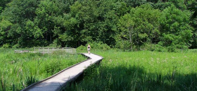 Springwater Conservation Area Aylmer