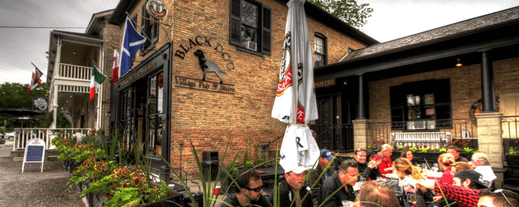 Blackdog bayfield ontario