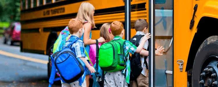 Schools near port franks ontario