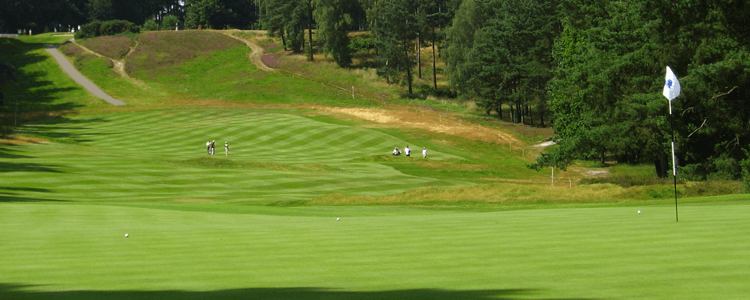 things to do sunningdale golf course