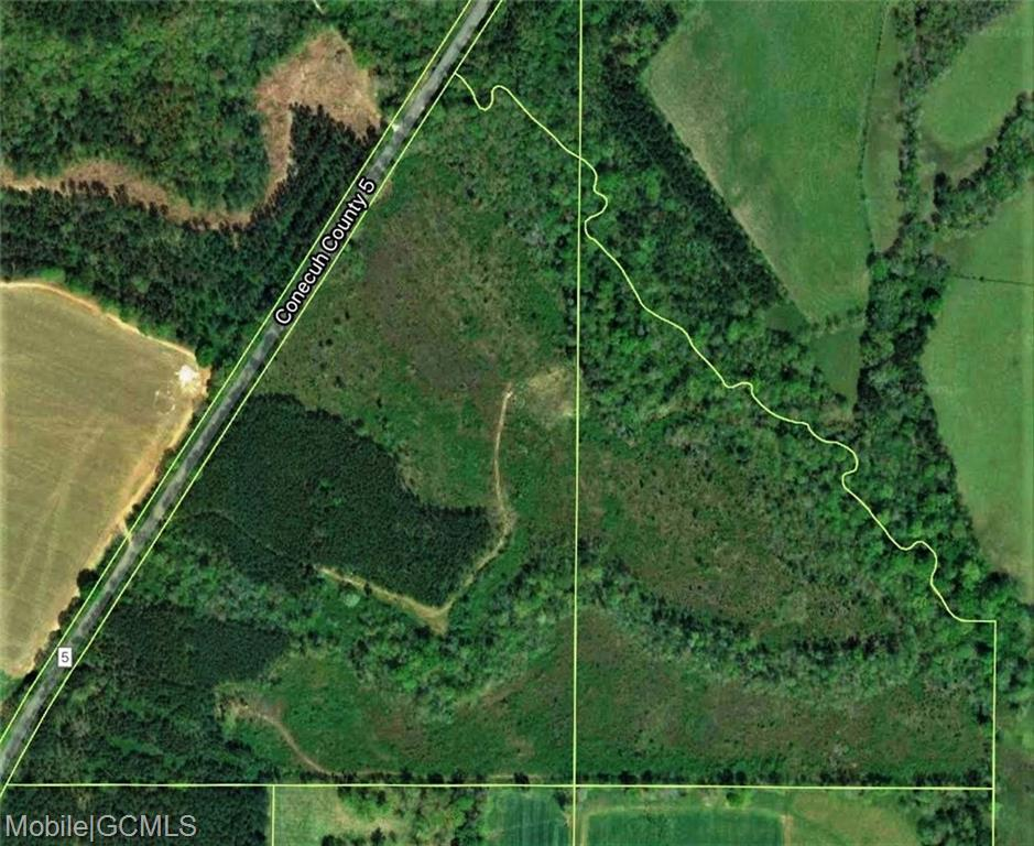 land for sale in monroeville alabama 36460 acres