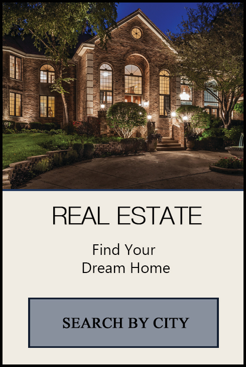Real estate search button