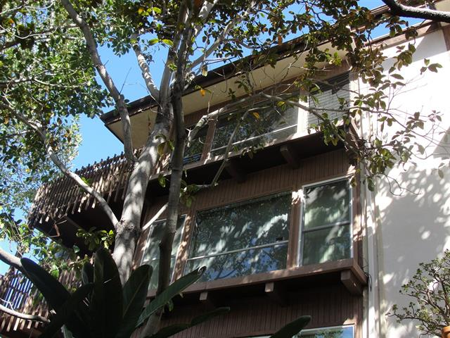 La Jolla condo for sale