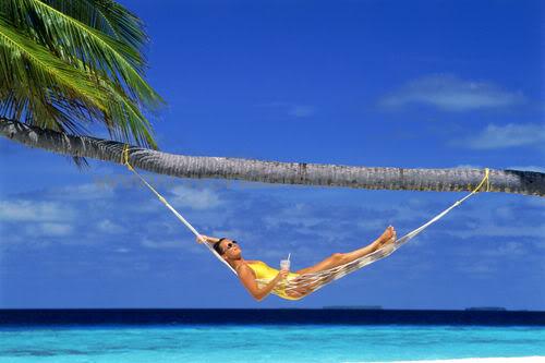 Island Rental Plus