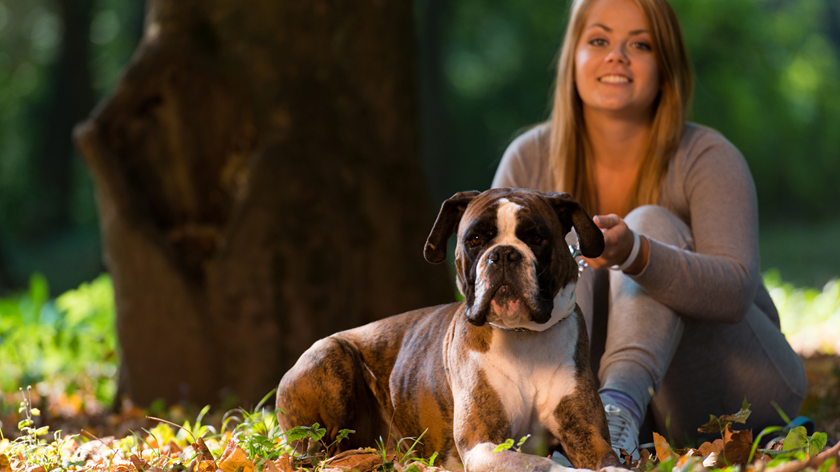 Dog Friendly Parks in Berks County PA