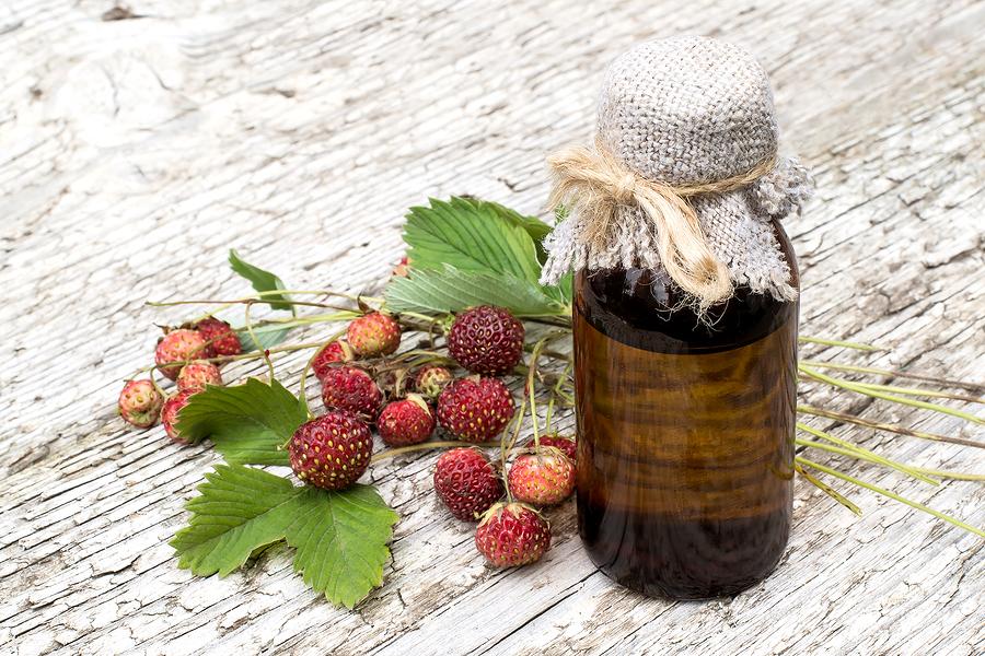 Find medicinal plans on Ashland property.