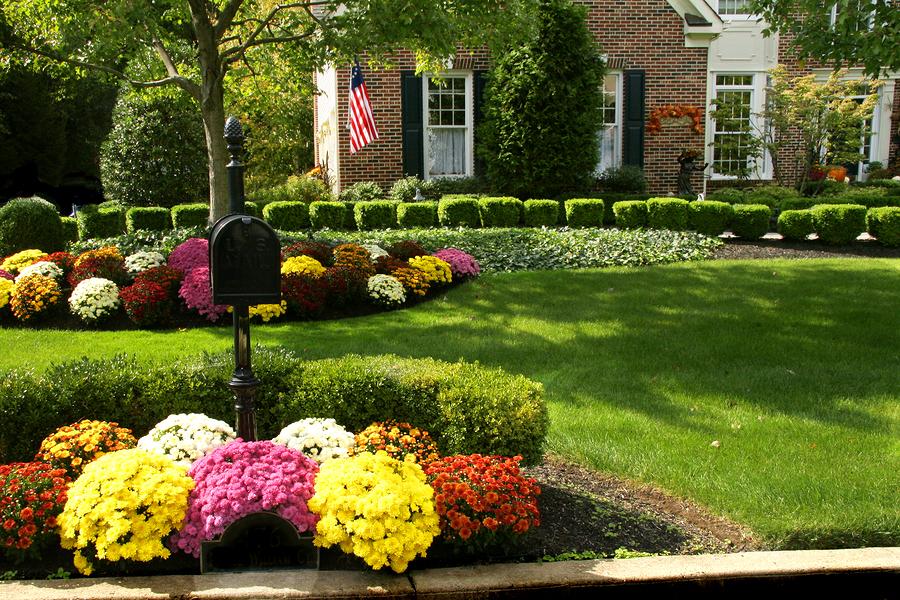 Plant fall gardens in Ashland homes.