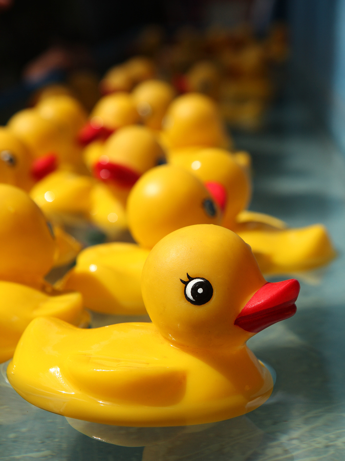 Do the duck derby on Grants Pass real estate.