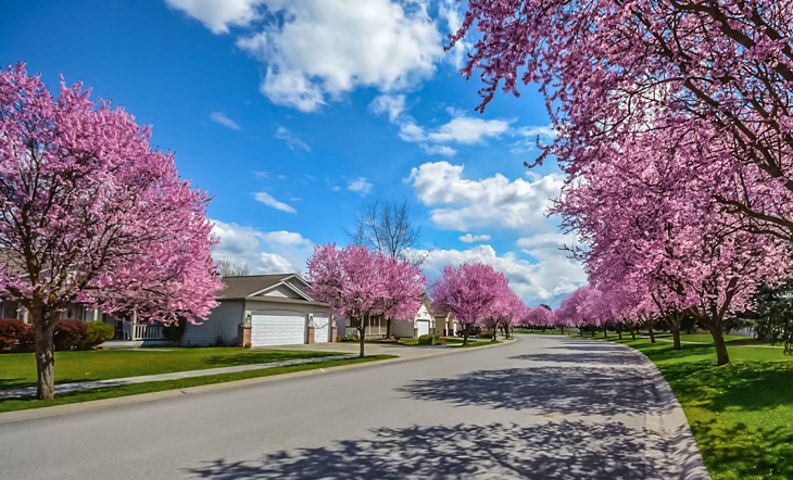Big Mortgage Rate Falls Point To An  Excellent Spring Homes Market