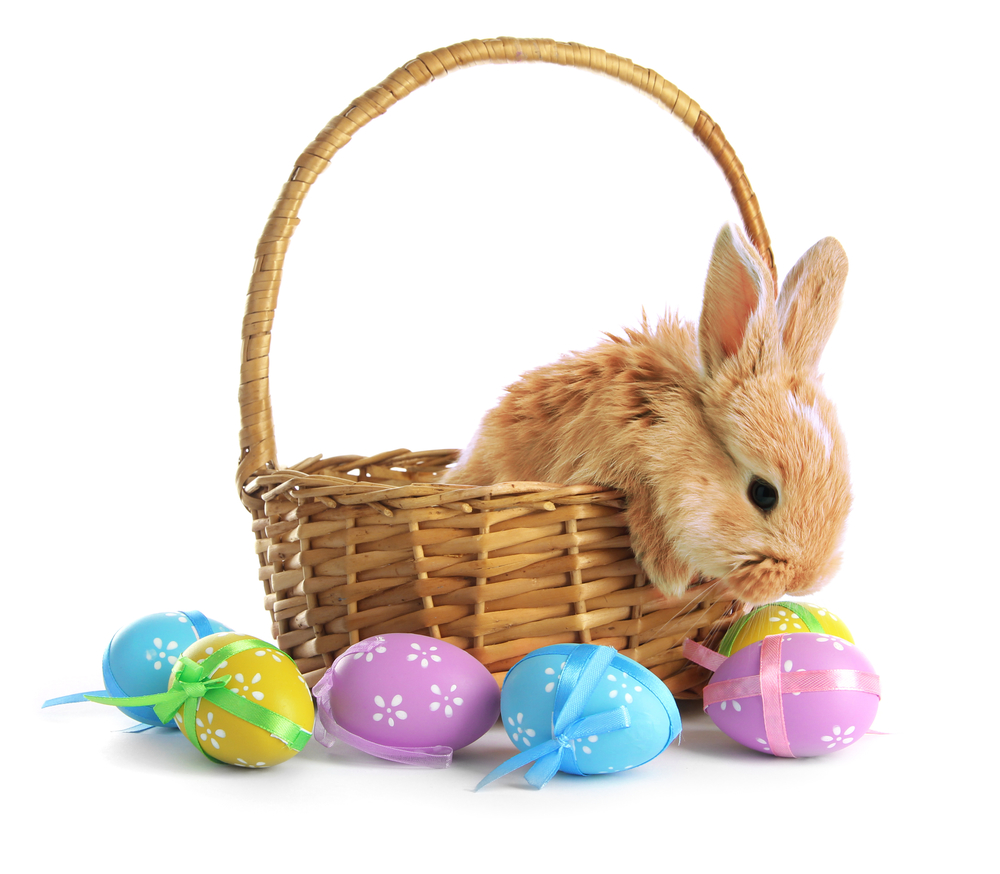 Why Bunnies And Eggs At Easter