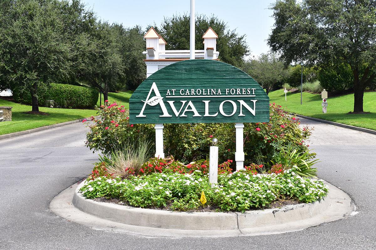 Avalon Entrance