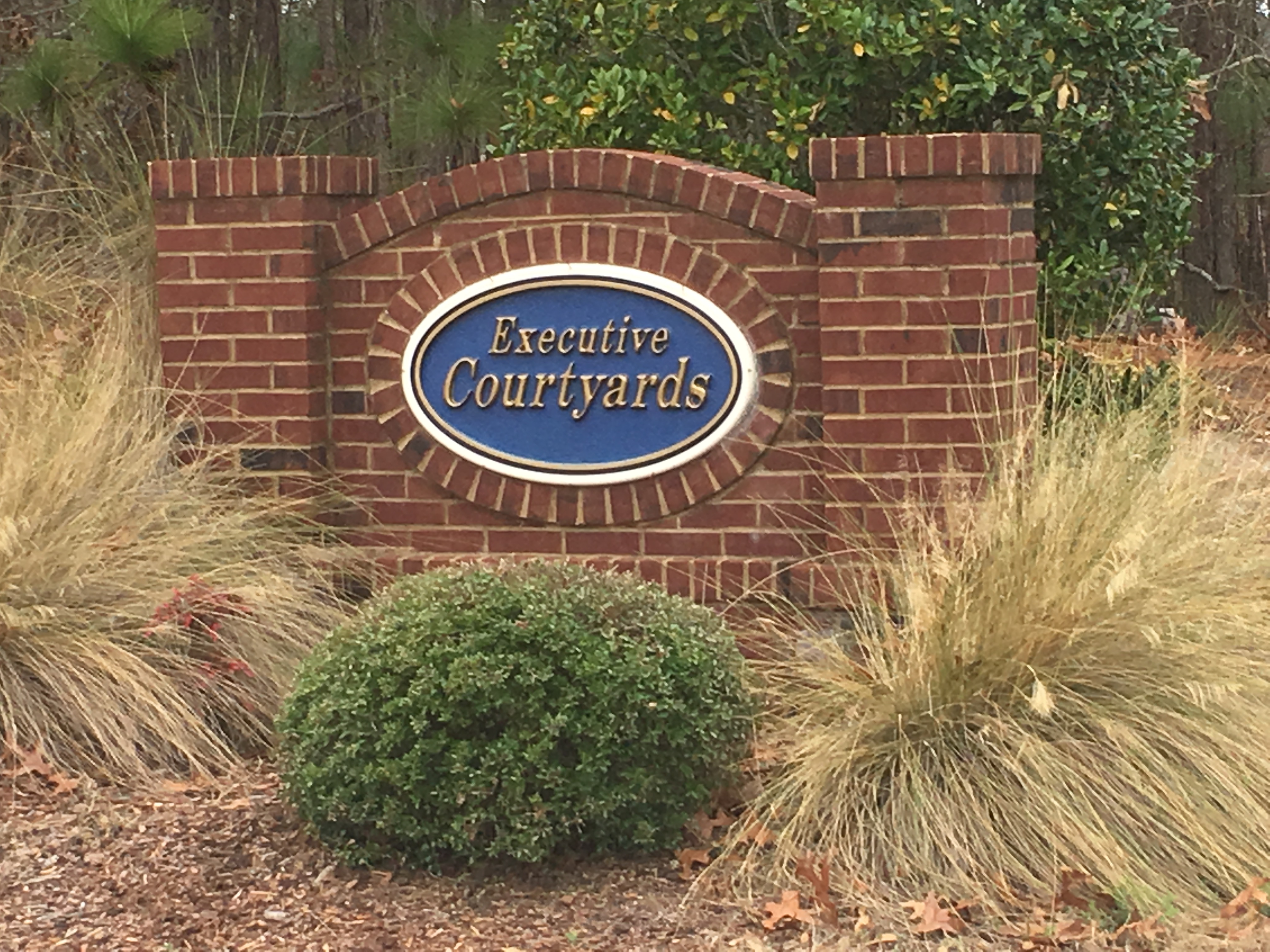 Columbia, SC Homes for Sale in Lake Carolina Executive Courtyards