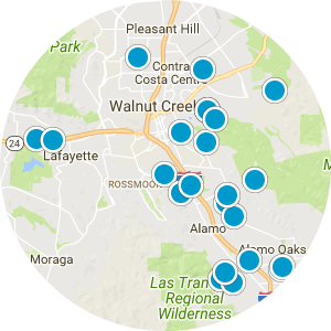 Pleasanton Real Estate Map Search