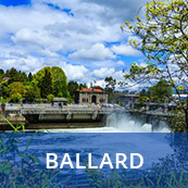 Ballard Home Search