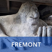 Fremont Home Search