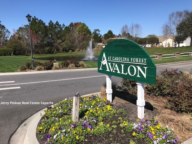 avalon carolina forest