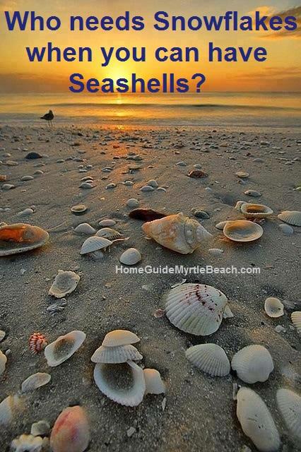 Collect Seashells